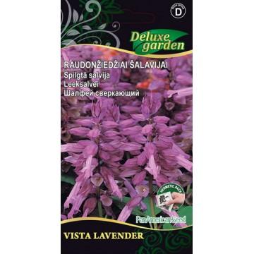 Leeksalvei Vista Lavender