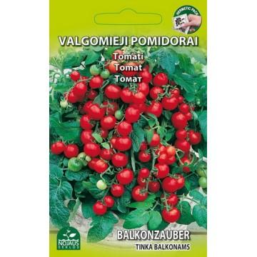 Tomat Balkonzauber
