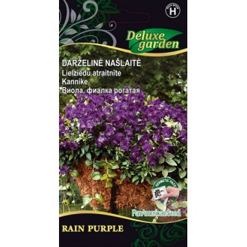 Kannike Rain Purple