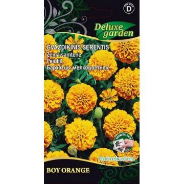 Peiulill Boy Orange