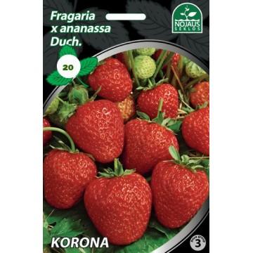 Frigo maasikataimed KORONA...