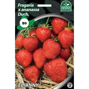 Frigo maasikataimed ELIANNY...